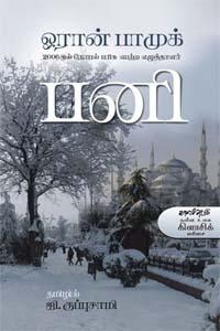snow-novel