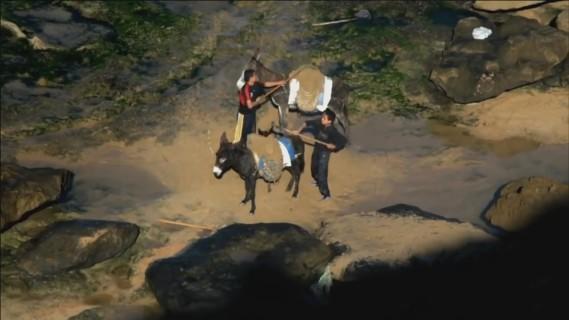 sandwar-bombay-donkey1