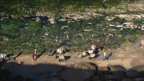 sandwar-bombay-donkey2