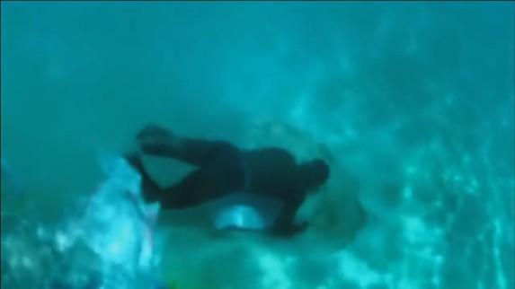 sandwar-maldive-underwater